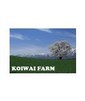 岩手県の有名な観光スポット小岩井農場。中でも人気な一本桜の写真をデザインにしております。写真はご自身で撮影した写真に置き換えることもできます。