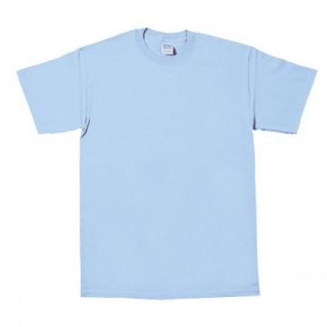 プレミアムコットンジャパンスペックTシャツ109C.カロライナブルー