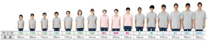 着用見本半袖Tシャツ