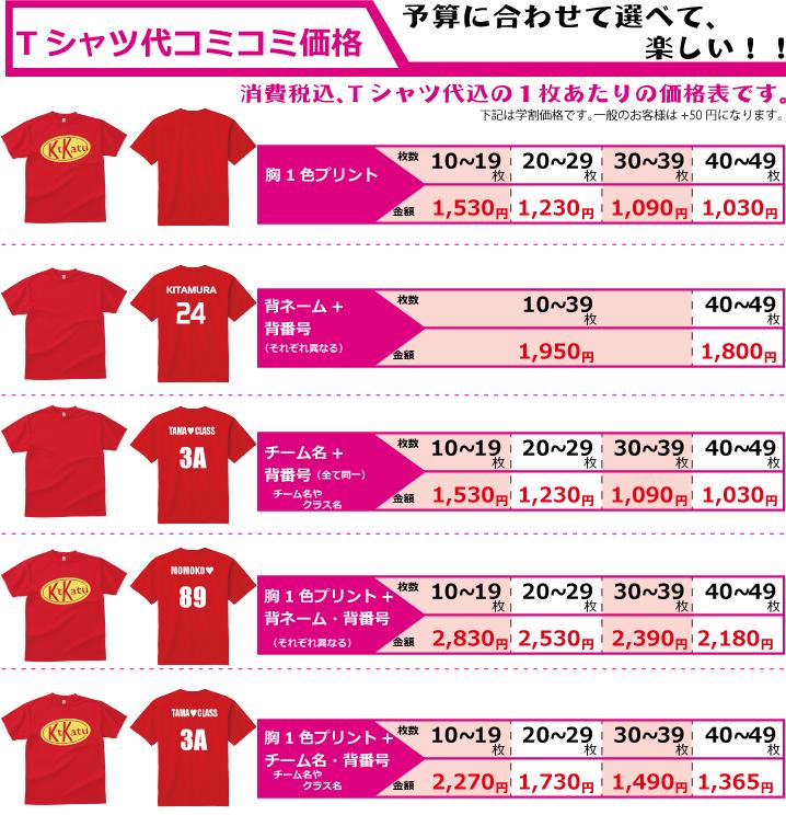 ドライTシャツ300価格表