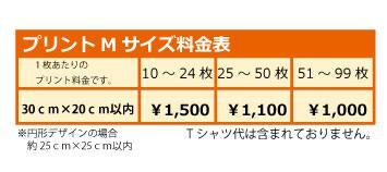 フルプリMサイズ料金