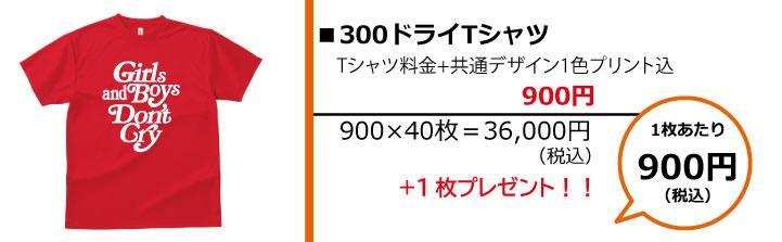 クラスTシャツ予算別画像1,000円300